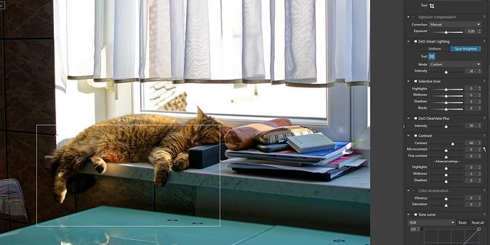 9_DXO_cat