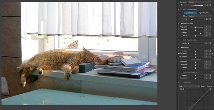 2_DXO_cat