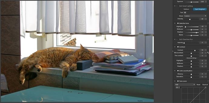 6_DXO_cat