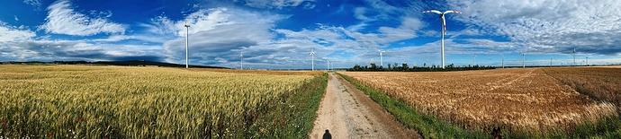 IMG_002476_DxO-wheatfields-and-windmills