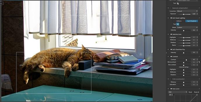 10_DXO_cat