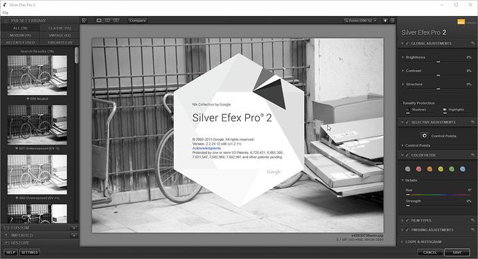 Silver%20Efex%20Pro%20Google