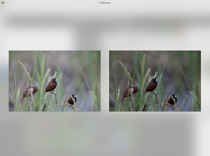 Capture d'écran 2021-08-02 à 10.28.20